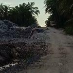 Menelisik Bisnis Dibalik Pengerukan Badan Jalan Desa Beringin Jaya, Wakil Ketua BPD: Masyarakat Protes Minta ke Jalur Hukum