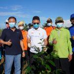 Tanam 680 Bibit Pohon di TPA Batulayang, Walkot Pontianak: Kita Wujudkan Hutan Kota