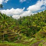 Destinasi Wisata di Bali yang Buka di Era Adaptasi Kebiasaan Baru