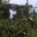 Tiang Listrik Tumbang di Area Publik Ancam Keselamatan Warga