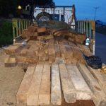 Warga Nanga Tayap jadi TSK tindak pidana ilegal logging