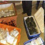 BNN Gagalkan 2 TSK Penyelundup 100 Kilogram Sabu di Sungai Duri