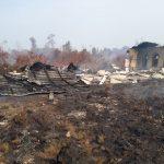 SDN 19 Telayar Terbakar Akibat Terdampak Karhutla di Mempawah