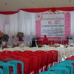 Meriahkan HUT IBI, 600 Bidan Akan Berkumpul di Melawi