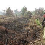 Karhutla Wilayah Kuala Sampas berhasil dipadamkan