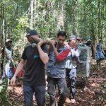 Orangutan Epen dilepasliarkan di Kawasan Hutan Lindung Tarak