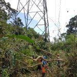UP3B Kalbar Inspeksi Rutin Jalur Transmisi PLN