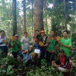 Obsevasi Tanaman Durian Lokal, Pertahankan Plasma Nutfah di Landak