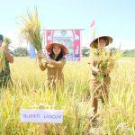 Produktifitas Petani Landak Terus di Pacu Dengan Sarana Penunjang