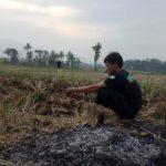 Selain Gelombang PHK saat Virus Corona, Indonesia Terancam Krisis Pangan