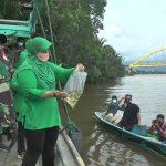 Danrem 121/Abw Tebar 5000 Benih Ikan dan Udang di Sungai Pawan