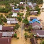 18.356 Hektar Lahan Pertanian Terancam Gagal Panen Akibat Banjir Kalsel