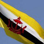Brunei Darussalam Dilanda Gelombang Kedua Covid-19, Indonesia Kirimkan Bantuan