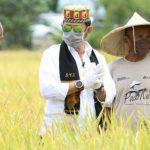 Rugikan Petani, DPR Tak Rekomendasikan Impor 1 Juta Ton Beras