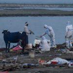 Ratusan Mayat Hanyut di Sungai Gangga, Diduga Korban Covid-19