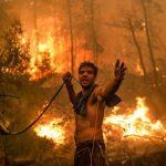 Yunani Dilanda Kebakaran Hutan, Ribuan Warga Terpaksa Mengungsi