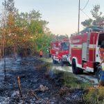 Kebakaran di Lahan Kosong BTN Bali Permai, Satpol PP Landak: Ada Warga Bakar Sampah