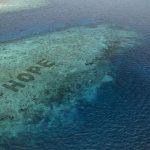 Lindungi Ekosistem Laut, Inilah Restorasi Terumbu Karang Terbesar di Dunia
