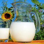 Kontrol Gula Darah hingga Kesehatan Mulut, Simak 5 Manfaat Susu Hangat