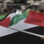 Anggota DPR Minta Pemerintah Tetapkan Regulasi Dana untuk Palestina