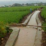 Mentan Sebut Rehabilitasi Jaringan Irigasi Mampu Dukung Upaya Pertanian