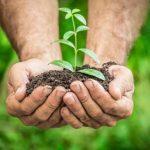 Peringati Hari Bumi, Yuk Recycle Sampah untuk Lindungi Udara dan Tanah