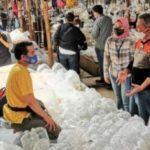 Pedagang Ikan Hias di Bogor Dapat Cuan Lewat Pembayaran Digital