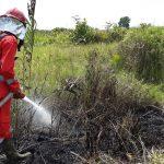 Karhutla Akibat Cuaca Panas, Satu Hektare Lebih Lahan Gambut Terbakar di Muara Pawan