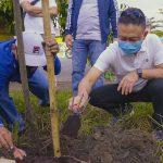 Pemkot Pontianak  Tanam Pohon di Jalan Sultan Hamid II