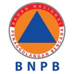 Sekira 3.000 Bencana Alam Terjadi Dalam Setahun, Ini Analisis BNPB