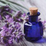 Stres Saat Hamil Mom? Bantu Atasi dengan 4 Herbal Ini